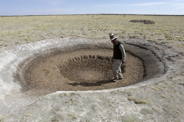 Farmer Sindulfo Fernandez inspects a dried watering hole for llamas in Orinoca, Oruro Department, Bolivia, January 8, 2016. The water dried due to a drought. (Photo by David Mercado/Reuters)