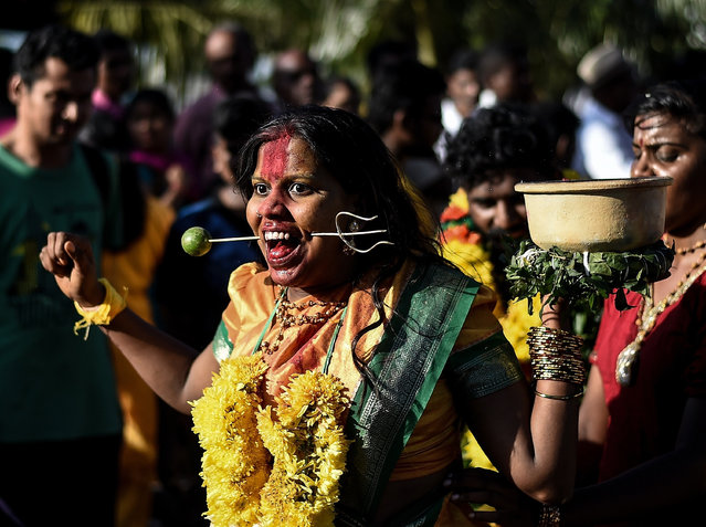 "A Malaysian Hindu devotee (C) reacts in a state of trance as she walks towards the Batu caves temple during the Thaipusam festival celebrations in Kuala Lumpur on January 24, 2016. More than a million Hindus celebrate the festival of ""Thaipusam"" at temples across the country. (Photo by Manan Vatsyayana/AFP Photo)"