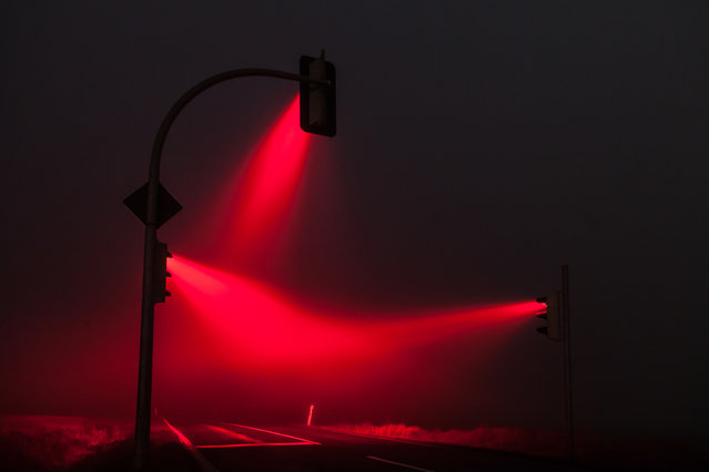 Misty Traffic Lights In Germany Photographed By Lucas Zimmermann