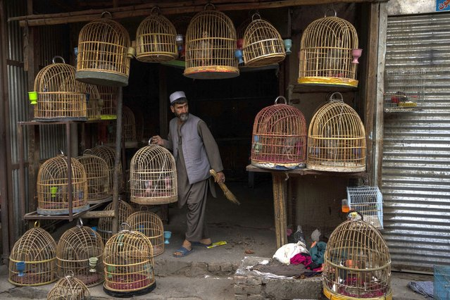 An Afghan bird seller holds a cage at a bird market in Kabul's Old City, Afghanistan, Tuesday, September 14, 2021. It is feared Afghanistan could further plunge toward famine and economic collapse after the chaos of the past month, which saw the Taliban oust the government in a lightning sweep as U.S. and NATO forces exited the 20-year war. (Photo by Bernat Armangue/AP Photo)