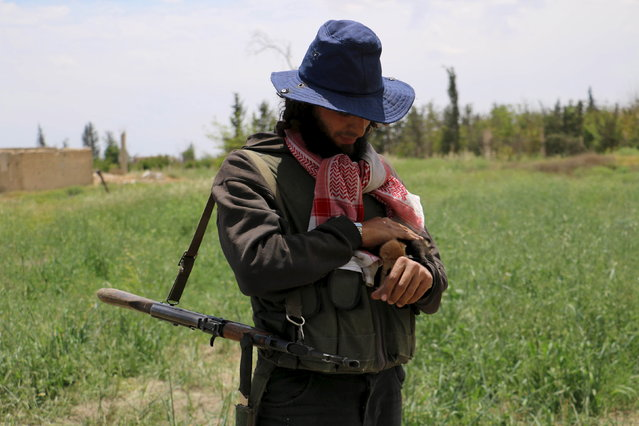 A rebel fighter of Jaysh al-Islam (Army of Islam) holds up a kitten he said he rescued near Deir Salman frontline, near the highway of Damascus international airport, Syria May 11, 2015. (Photo by Amer Almohibany/Reuters)