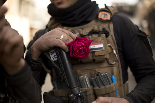 An Iraqi special forces soldier wears a rose in his body armor as troops move from the Yarmouk neighborhood to take another district from Islamic State militant control in Mosul, Iraq, Wednesday, April 12, 2017. (Photo by Maya Alleruzzo/AP Photo)