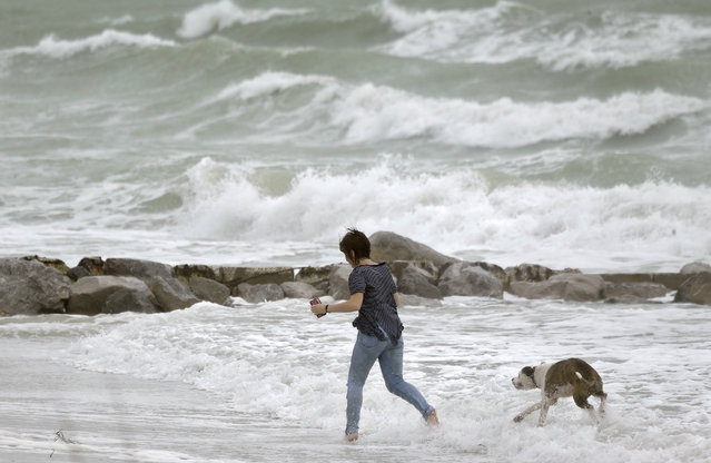 A woman runs in the heavy surf with her dog at Sunset Beach in Treasure island, Fla., Monday, June 6, 2016, as Tropical Storm Colin churns in the Gulf of Mexico. Colin was expected to make landfall somewhere along Florida's gulf coast. (Photo by Chris O'Meara/AP Photo)