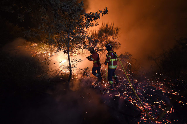 Firefighters try to extinguish a wildfire in Mangualde, Portugal, 11 August 2015. About 200 firefighters, 58 land vehicles, two helicopters and one plane are working to fight the fire. (Photo by Nuno Andre Ferreira/EPA)
