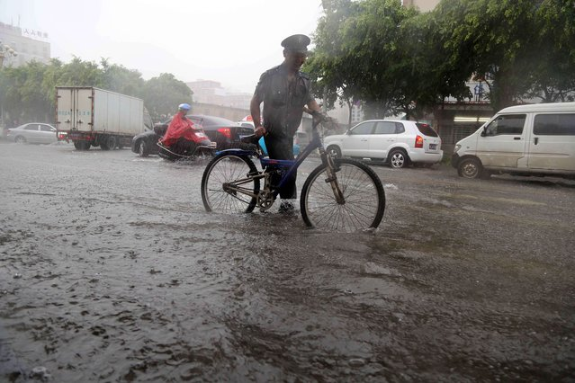 A man walks with his bike in pouring rain in Jinjiang, south China's Fujian province of July 23, 2014 as typhoon Matmo makes landfall in China. Typhoon Matmo pounded Taiwan with fierce winds and downpours, leaving nine people injured, shuttering financial markets, and interrupting rail and air transportation. (Photo by AFP Photo)