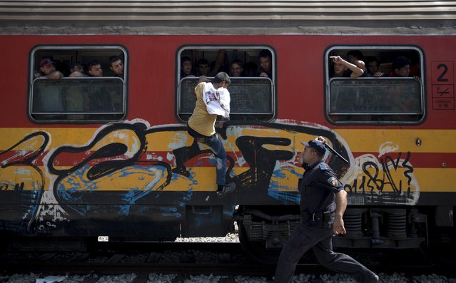 A policeman tries to stop a migrant from boarding a train through a window at Gevgelija train station in Macedonia, close to the border with Greece, August 15, 2015. In the past month, an estimated 30,000 refugees have passed through Macedonia, another step in their uncertain search for a better life in western Europe. (Photo by Stoyan Nenov/Reuters)