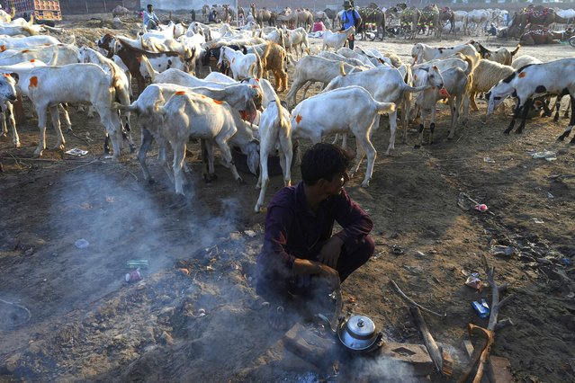 "A farmer prepares tea in front of his goat stall at a cattle market set to buy sacrificial animals ahead of Eid al-Adha Muslim festival or the ""Festival of sacrifice"" in Lahore on July 26, 2020. (Photo by Arif Ali/AFP Photo)"