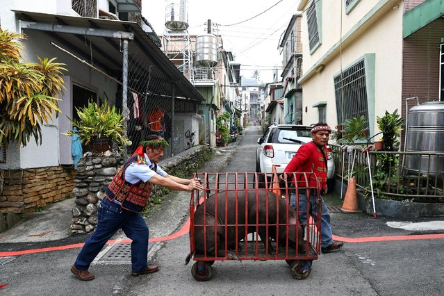 Men from the Paiwan tribe push a cart with a pig to the wedding ceremony in Pingtung, Taiwan, December 12, 2020. (Photo by Ann Wang/Reuters)
