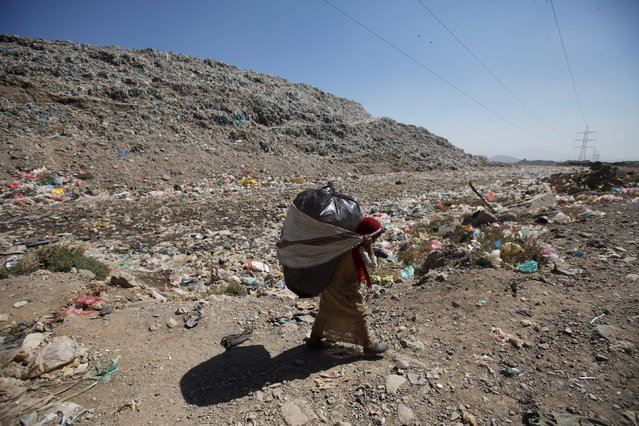 A girl carries the collect recyclable items at a rubbish dump site on the outskirts of Sanaa, Yemen November 16, 2016. (Photo by Mohamed al-Sayaghi/Reuters)