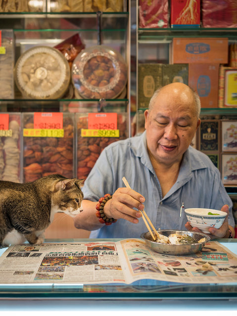 """When Dutch photographer Marcel Heijnen moved to Hong Kong, the territory's shop cats instantly caught his eye. While the """"feline emperors"""" are the stars, his shots also offer insights into Hong Kong's wares, from dried fish to paper. Here: Hong Kong Shop Cats #22. (Photo by Marcel Heijnen/Blue Lotus)"""
