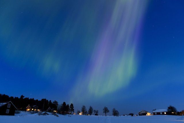 The Aurora Borealis bright up the sky at twilight on March 17, 2013 between the towns of Are and Ostersund, Sweden. (Photo by Jonathan Nackstrand/AFP Photo)