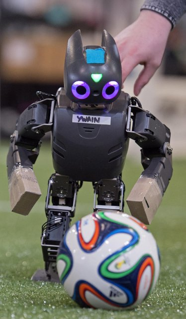 A robot plays the ball during a soccer match at the RoboCup German Open 2015 in Magdeburg, Germany, Friday, April 24, 2015. (Photo by Jens Meyer/AP Photo)