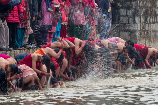 Nepalese Hindu devotees take a mass holy bath in the Triveni River during the month-long Madhav Naryan festival in Panauti village, Nepal, 31 January 2017. The Madhav Narayan festival is a full month-long event devoted to religious fasting, holy bathing and the study of the holy book called the Swasthani, which is dedicated to the God Shiva and Goddess Swastania. A chapter of the story is read each evening by priests or householders to the gathered family. Hundreds of married and unmarried women and dozens of male devotees complete a month-long fast for a better life and peace in the country at various temples. Unmarried women take the fast to attract a suitable husband and married women take the fast in hopes of improving their families' prosperity. (Photo by Narendra Shrestha/EPA)