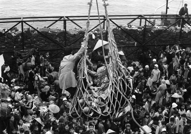 In this April 1, 1975 file photo, a cargo net lifts refugees from a barge onto the SS Pioneer Contender for evacuation from the fallen city of Da Nang, Vietnam. It took eight hours to load some 6,000 refugees aboard the ship. (Photo by Peter O'Loughlin/AP Photo)