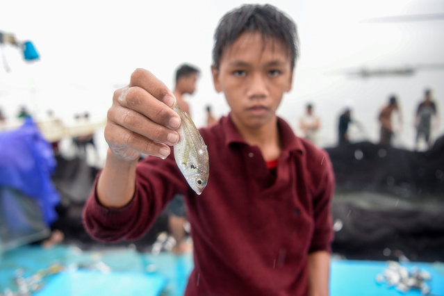 In this photo taken on March 16, 2019, 13-year-old Reymark Cavesirano shows one of the fish he collected onboard a fishing boat anchored at the mouth of Manila Bay off Navotas City in suburban Manila. (Photo by Ted Aljibe/AFP Photo)
