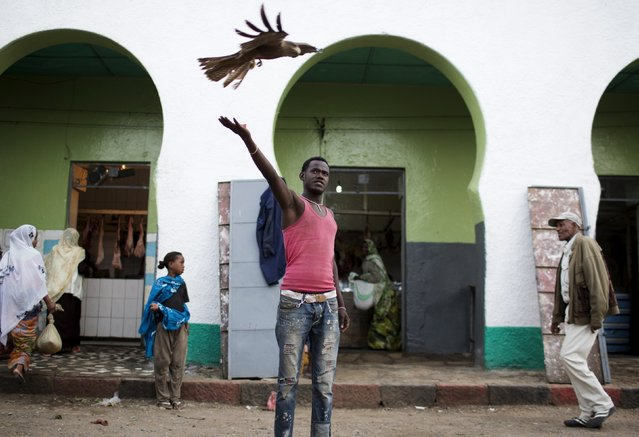 A man feeds an eagle in the old walled town of Harar in eastern Ethiopia, May 19, 2015. (Photo by Siegfried Modola/Reuters)