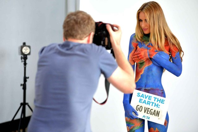 """Model Renee Somerfield is photographed with her body painted as the earth with a sign reading """"Save the Earth, Go Vegan"""" for a new advertisement by People for the Ethical Treatment of Animals (PETA) in Sydney on July 3, 2014. PETA is telling the world to stop eating meat and dairy products and switch to a healthy and animal friendly vegan diet. (Photo by Peter Parks/AFP Photo)"""