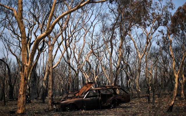 "A burnt car is seen among the charred trees in Lithgow, in Australia's New South Wales, on January 11, 2020. Massive bushfires in southeastern Australia have a ""long way to go"", authorities have warned, even as colder conditions brought some relief to exhausted firefighter and communities. (Photo by Saeed Khan/AFP Photo)"