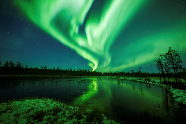 The Aurora Borealis (Northern Lights) is seen over the sky near Rovaniemi in Lapland, Finland, October 7, 2018. (Photo by Alexander Kuznetsov/Reuters)