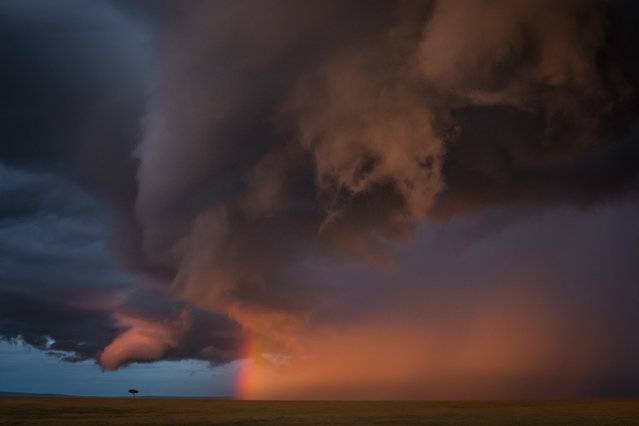 Second place, Landscapes. Jose Fragozo – Masai Mara sky. (Photo by Jose Fragozo/2020 GDT Nature Photographer of the Year)