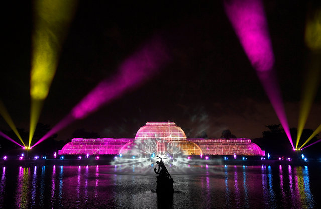 Sculptures, buildings and trees are illuminated at the Kew Gardens light trail at Kew in west London, Britain, November 21, 2017. (Photo by Toby Melville/Reuters)