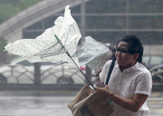 A woman holds onto her umbrella while walking against strong winds caused by Typhoon Dujuan in Taipei, Taiwan, September 28, 2015. (Photo by Pichi Chuang/Reuters)