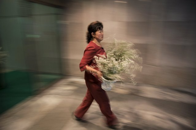 A woman carries Flowers to decorate the lobby of a hotel in Pyongyang late October 7, 2015. (Photo by Damir Sagolj/Reuters)