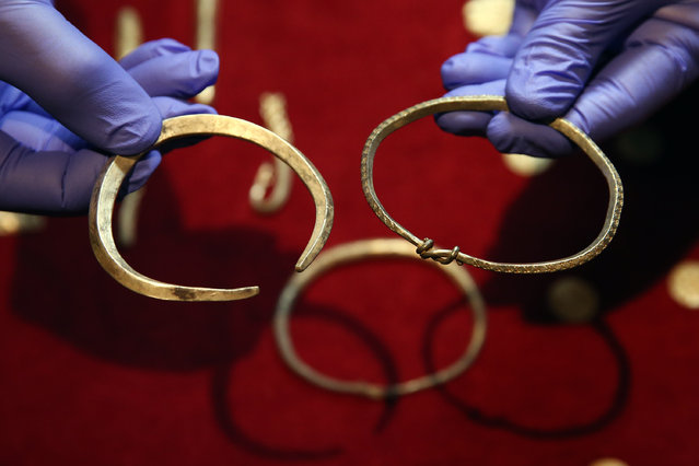 Viking armbands are held during a press preview for a rare Viking hoard discovered by metal detector enthusiast James Mather, at the British Museum on December 10, 2015 in London, England. The hoard was discovered in Watlington in Norfolk and is believed to have been buried in around 870. It was excavated as part of the Portable Antiquities Scheme and is now on display at the British Museum. (Photo by Carl Court/Getty Images)