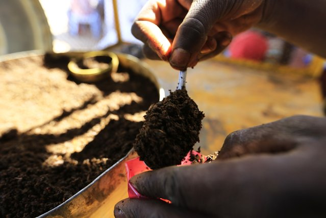 A trader prepares snuff tobacco for sale at  market in el-Fasher, North Darfur, February 5, 2015. (Photo by Mohamed Nureldin Abdallah/Reuters)