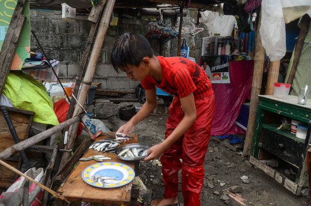 """In this photo taken on March 16, 2019, 13-year-old Reymark Cavesirano counts his """"catch"""" of tiny fish outside his makeshift house in Navotas City in suburban Manila. """"I want to reciprocate my grandparents' kindness"""", he says. """"I want them to have a three-storey house made from concrete"""". (Photo by Ted Aljibe/AFP Photo)"""