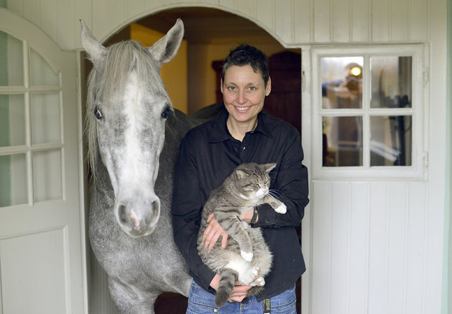 Doctor Stephanie Arndt poses with Nasar, an Arabian horse, cat Lilly in her home on February 19, 2014 in Holt, Germany. (Photo by Patrick Lux/Getty Images)