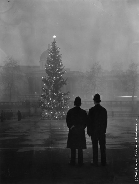 1948: Two policemen regard London's 64ft Christmas tree, a gift from Norway, illuminated in Trafalgar Square, in front of the National Gallery