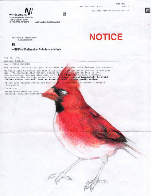 Some of her favorite birds include herons, sparrows, crows, red-winged blackbirds and warblers. A drawing of a cardinal seemed fititng with red notice. (Photo by Paula Swisher/Caters News)