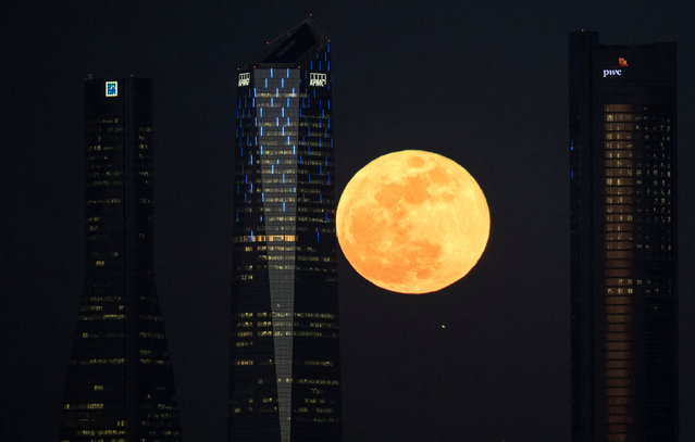 """A full moon """"supermoon"""" rises in between four towers in a skyscrapers area in Madrid, Spain, January 31, 2018. (Photo by Paul Hanna/Reuters)"""
