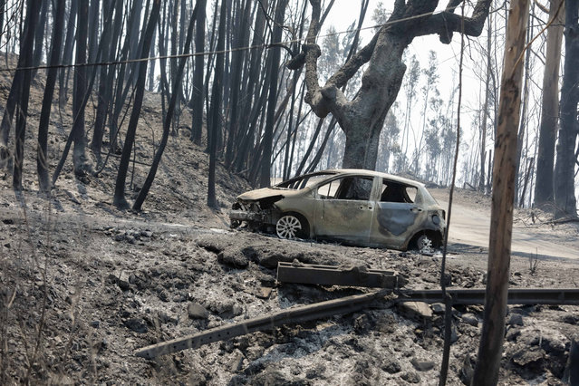 A burned car at N236 road between Figueiro dos Vinhos and Castanheira de Pera, Pedrogao Grande, central Portugal, 18 June 2017. At least sixty two people have been killed in forest fires in central Portugal, with many being trapped in their cars as flames swept over a road on the evening of 17 June 2017. A total of 692 firefighters are providing assistance. (Photo by Paulo Novais/EPA)