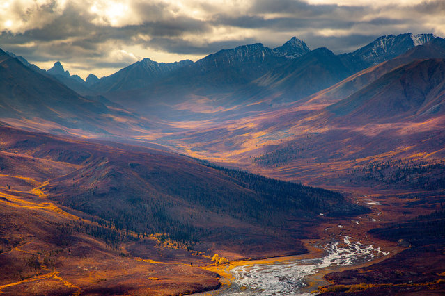 Fifth place, Landscapes. Axel Gomeringer – Yukon Gold Rush. Tombstone territorial park. (Photo by Axel Gomeringer/2020 GDT Nature Photographer of the Year)
