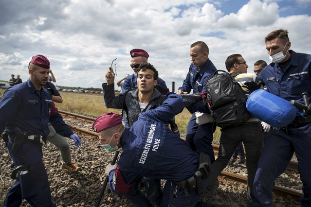 Hungarian policemen attempt to stop a migrant as he tries to escape a collection point in Roszke village, Hungary, September 8, 2015. (Photo by Marko Djurica/Reuters)