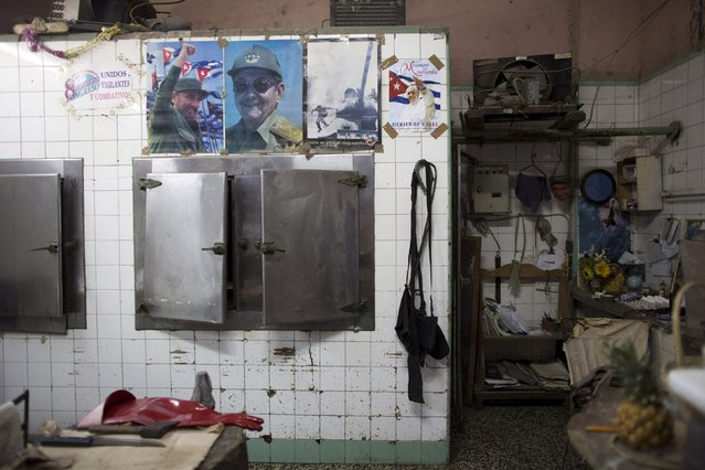 Pictures of Cuba's President Raul Castro (2nd L) and former president Fidel Castro are displayed beside a poster advertising the visit of Pope Francis to Cuba in a butcher shop in downtown Havana, September 4, 2015. (Photo by Alexandre Meneghini/Reuters)