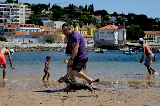 People with their dogs enjoy the sunshine at a pet-friendly beach in Oeiras, Portugal, on June 28, 2020. The Pescadores beach, opened yesterday, June 27, in Oeiras as a pet-friendly beach, allowing people to stay with their pets with appropriate hygiene conditions as well as safety standards due to the Covid-19 pandemic. (Photo by Pedro Fiúza/NurPhoto via Getty Images)