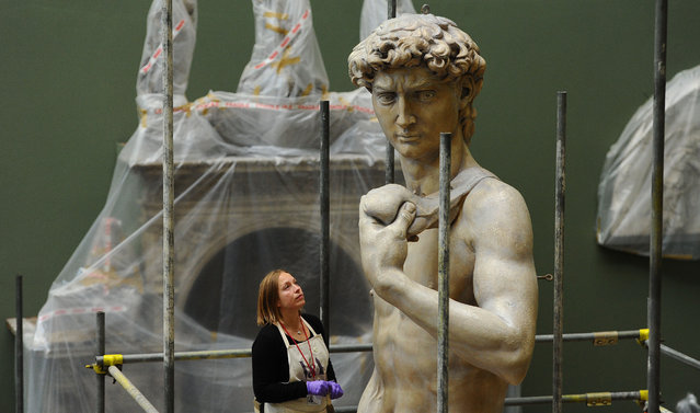 Johanna Puisto, sculpture conservator at The V&A, unveils a cast of Michaelangelo's David at Victoria & Albert Museum on November 10, 2014 in London, England. (Photo by Stuart C. Wilson/Getty Images)