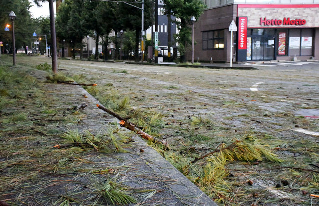 Broken branches are scattered on road after typhoon hit Kagoshima, southwestern Japan Monday, September 7, 2020. (Photo by Kyodo News via AP Photo)