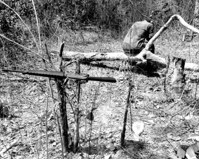 The furious clangor of battle stilled, a weary U.S. paratrooper of the 173rd airborne brigade sits in the stillness with head in his hands after an intense firefight between his company and entrenched Viet Cong guerrillas in the Vietnam Jungle on March 1, 1966. His weapon rests on bullet shattered underbush. Casualties in that U.S. unit were heavy on February 27. (Photo by AP Photo)