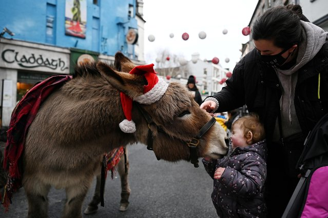 Two-year-old Sofia Fox is nuzzled by a donkey wearing a Santa hat in a shopping street in Galway, Ireland, December 22, 2020. (Photo by Clodagh Kilcoyne/Reuters)