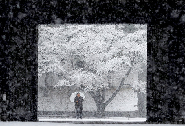 A man holding an umbrella makes his way in the heavy snow at the Imperial Palace in Tokyo, Japan January 22, 2018. (Photo by Kim Kyung-Hoon/Reuters)