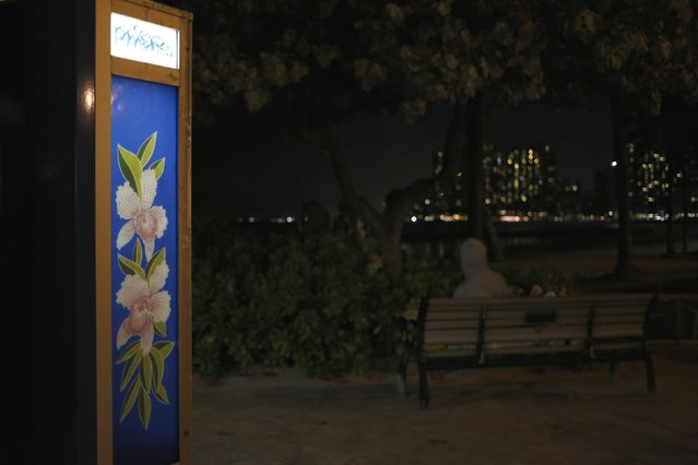 A tropical flower design helps a public phone booth stand out near a homeless man as he sits on a park bench just before lying down for the night in the Waikiki district of Honolulu, Hawaii December 22, 2015. (Photo by Jonathan Ernst/Reuters)