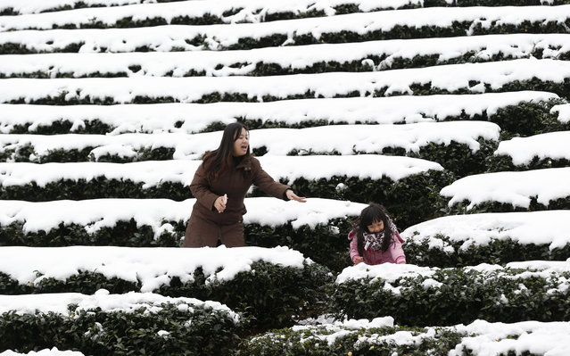 A mother and daughter play in the light snowfall on a tea plantation in the Pinglin mountain area of New Taipei City, Taiwan, Monday, January 25, 2016. (Photo by Wally Santana/AP Photo)