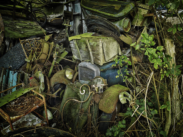 The individual parts cannot be seen after years of abandonment, in 2013, France. (Photo by Dieter Klein/Barcroft Media)