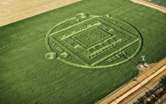 """This photo provided by NVIDIA shows a 310-foot """"crop circle"""" in a California barley field that mystified locals this week was explained Sunday January 6, 2014: it was a publicity stunt by Nvidia Corp., a maker of chips for PCs and smartphones. (Photo by AP Photo/NVIDIA)"""