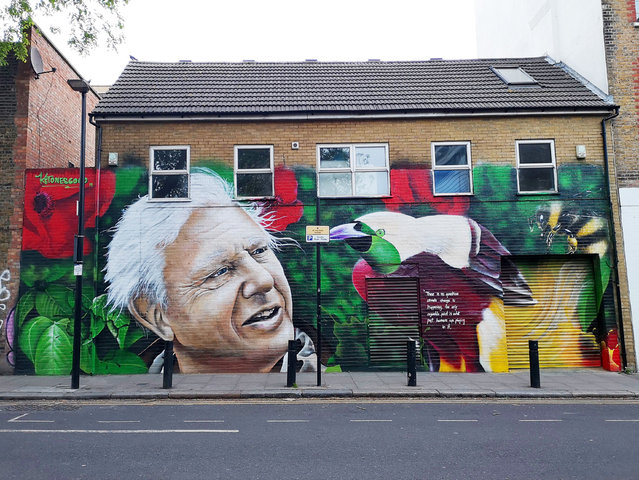 """David Attenborough mural painted on a house in St Matthew's Row, east London, England by artist Jerome on May 7, 2019. It reads """"There is no question climate change is happening. The only arguable point is what part humans are playing in it"""". (Photo by Charlotte Elsom/Shutterstock)"""