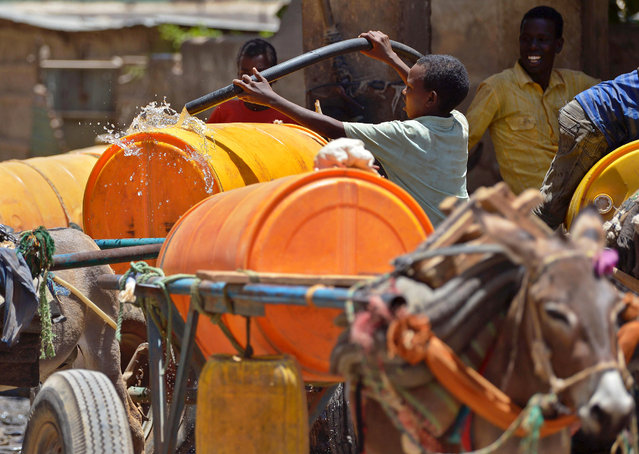 A young boy fills with water a drum loaded on a donkey-cart before selling it on March 15, 2017 in Baidoa, in the southwestern Bay region of Somalia, where the spread of cholera has claimed tens of lives of internally displaced people fleeing the parched countryside. (Photo by Tony Karumba/AFP Photo)